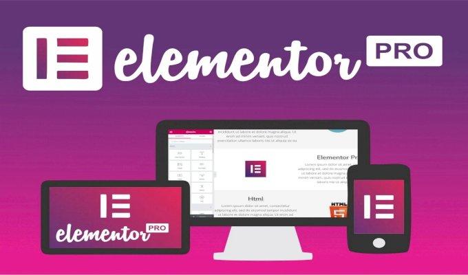 Elementor & Elementor Pro